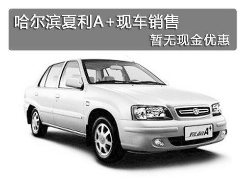 哈尔滨夏利A+现车销售 暂无现金优惠