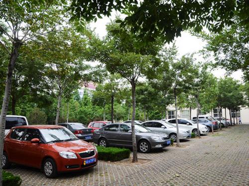 三类免赔|停车场对车受损不负全责 三类情况免赔