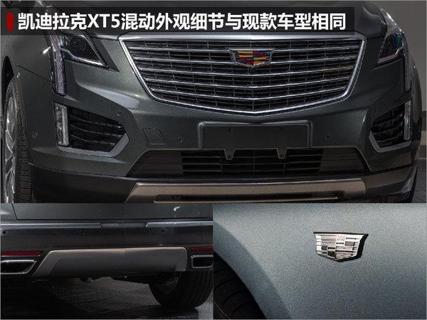 凯迪拉克XT5将推混动版车型 油耗下降-图-图2