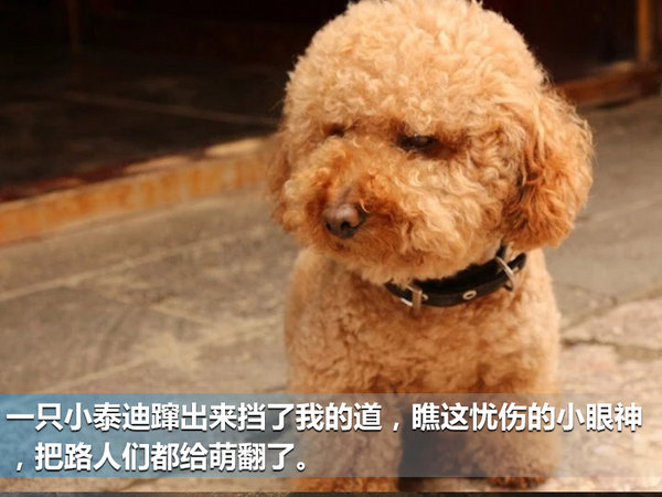 重返泸沽湖 重返青春 风光580云南之旅-图5