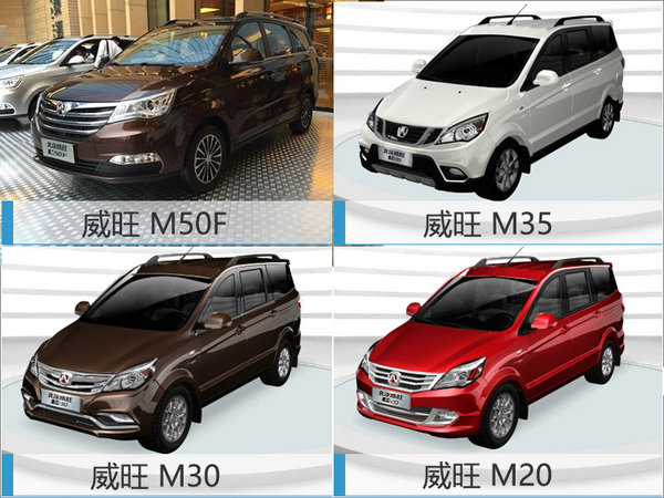 李峰揭秘威旺未来方向 将推7座SUV等新车-图4