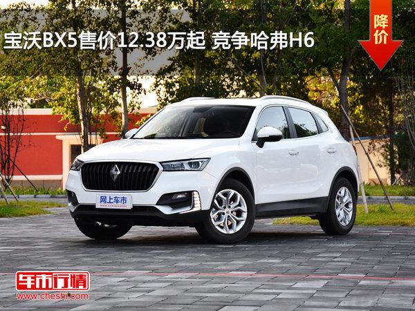 宝沃BX5售价12.38万起 竞争哈弗H6-图1