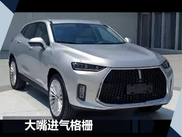 长城/WEY加速产品投放 将连推7款新SUV车型-图3