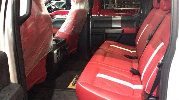 福特F150皮卡畅销榜首名列前茅 改装配置-图14