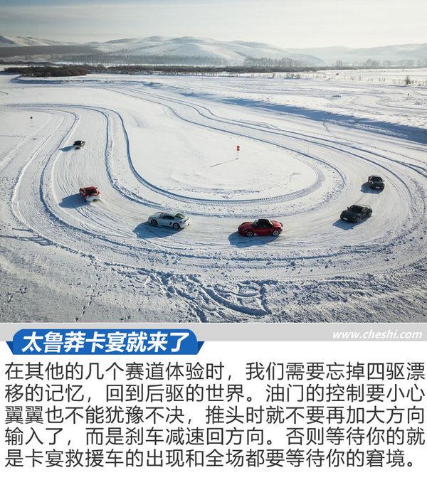优乐国际体验之凌驾冰雪 这些青蛙一点都不怕冷吗-图5