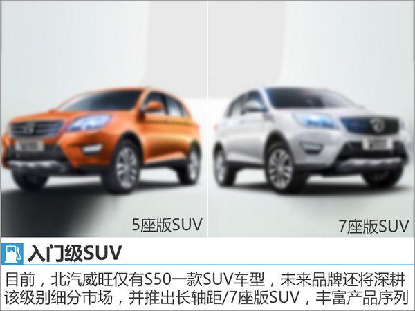 李峰揭秘威旺未来方向 将推7座SUV等新车-图5