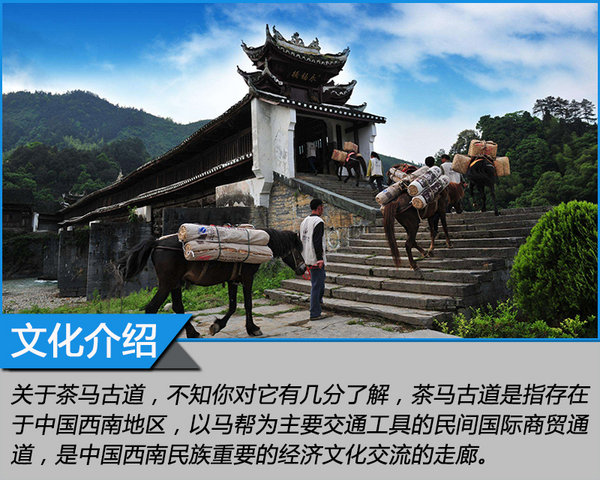来自MG的征服之心 探寻茶马古道文化之旅-图4