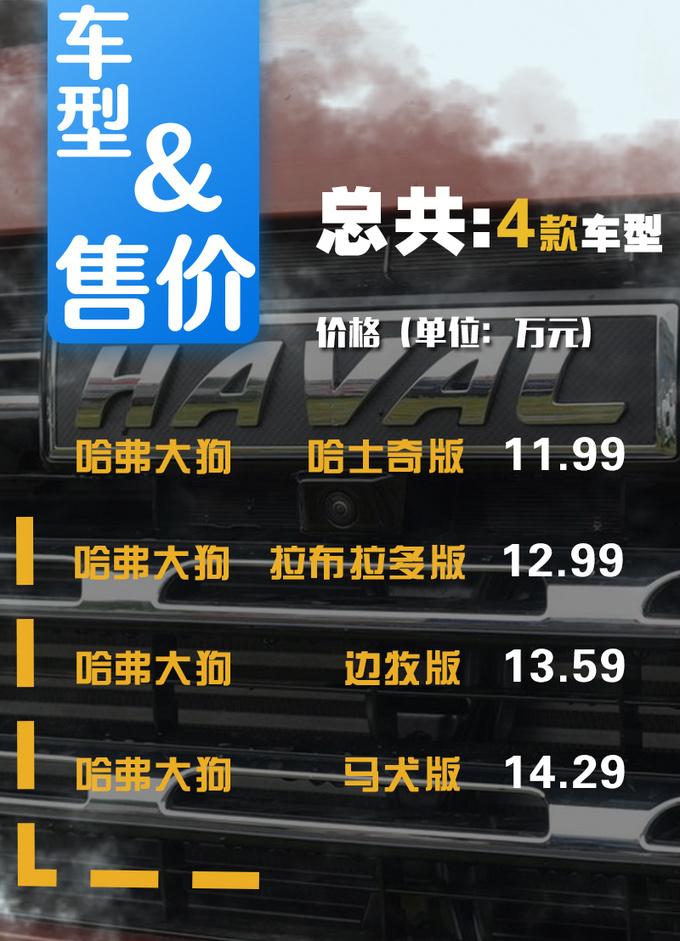 哈弗硬派SUV大狗上市11.99-14.29万 4款配置怎么选-图4