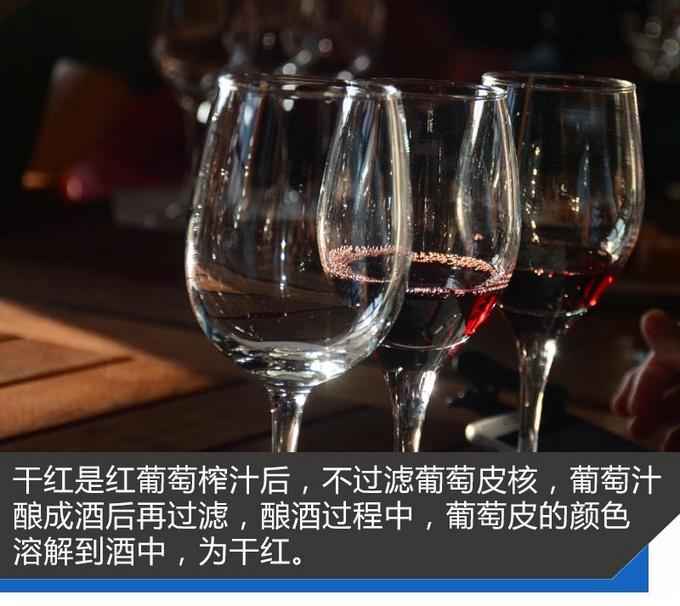 法国除了浪漫的红酒还有让人心醉的它们-图8