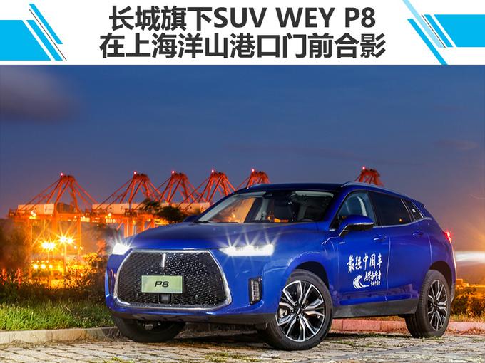 从土鳖到学霸 最强中国车的锐变之路-图5