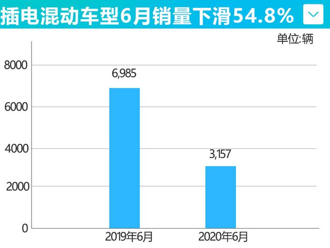 比亚迪新能源车6月销量腰斩 累计暴跌59.2-图11