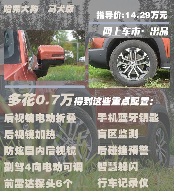 哈弗硬派SUV大狗上市11.99-14.29万 4款配置怎么选-图8